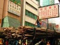 http://www.onziemeetage.fr/files/gimgs/th-17_17_cecilemescam2005hongkongbambou.jpg
